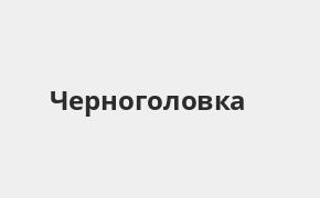 Справочная информация: Банкоматы Газпромбанка в Черноголовке — часы работы и адреса терминалов на карте