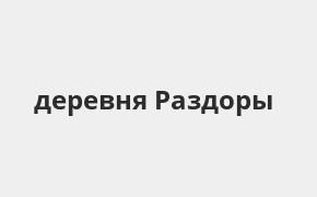 Справочная информация: Банкоматы Газпромбанка в деревне Раздоры — часы работы и адреса терминалов на карте