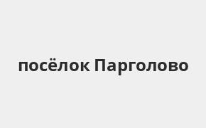 Справочная информация: Банкоматы Газпромбанка в посёлке Парголово — часы работы и адреса терминалов на карте