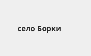 Справочная информация: Банкоматы Газпромбанка в селе Борки — часы работы и адреса терминалов на карте